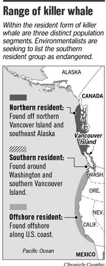 Range of Killer Whale. Chronicle Graphic