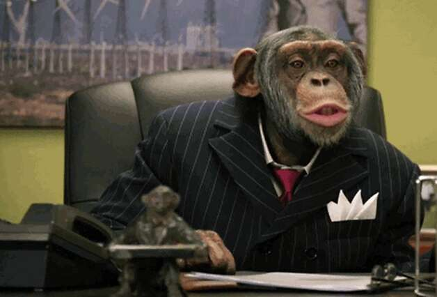 This video grab provided by CareerBuilders.com, shows the executive chimpanzee advertisement that will air during Super Bowl XLVI Sunday, Feb. 5, 2012.  Chicago's Lincoln Park Zoo says there's nothing funny about a commercial featuring suit-and-tie wearing chimpanzees scheduled to air Sunday during the Super Bowl.   Dr. Steven Ross of the zoo says CareerBuilder.com's commercial that shows the chimps outsmarting a human co-worker actually poses a risk to chimpanzees because people lose sight of the fact they're an endangered species and less likely to try to save them.   (AP Photo/CareerBuilders.com) Photo: Associated Press