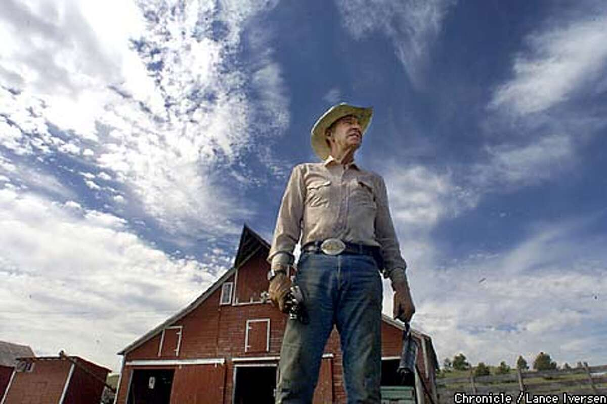 Buffalo ranchers like Kirk Budd, standing in front of one of four barns at his Freshwater Ranch, are thriving. Chronicle photo by Lance Iversen