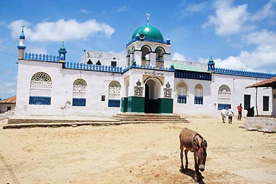 One of lamu's well-protected donkeys outside one of Lamu Town's two mosques. Photo by Amanda Jones