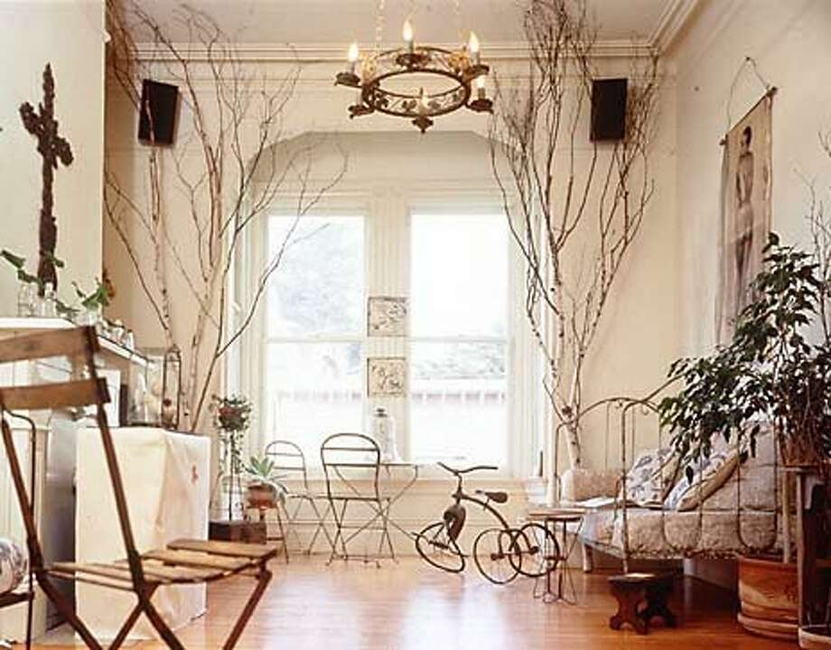 A well-worn tricycle and old-fashioned plants brighten a living room