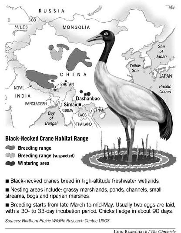 Black-Necked Crane Habitat Range. Chronicle graphic by John Blanchard