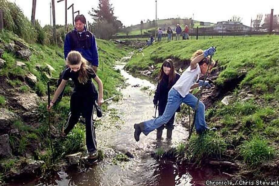 Jenna Santorio, 9, leaps over a creek while she and classmates from Manor Elementary School in Fairfax plant 400 willow sprigs by Pruitt Ranch near Petaluma. The school is part of a network developed by the Bay Institute. Chronicle Photo by Chris Stewart