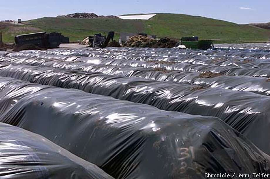 "Rows of compost in plastic bags cooked in the sun at the Norcal Waste Systems ""farm"" in Solano County. Chronicle photo by Jerry Telfer"