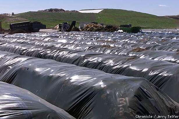 """Rows of compost in plastic bags cooked in the sun at the Norcal Waste Systems """"farm"""" in Solano County. Chronicle photo by Jerry Telfer"""