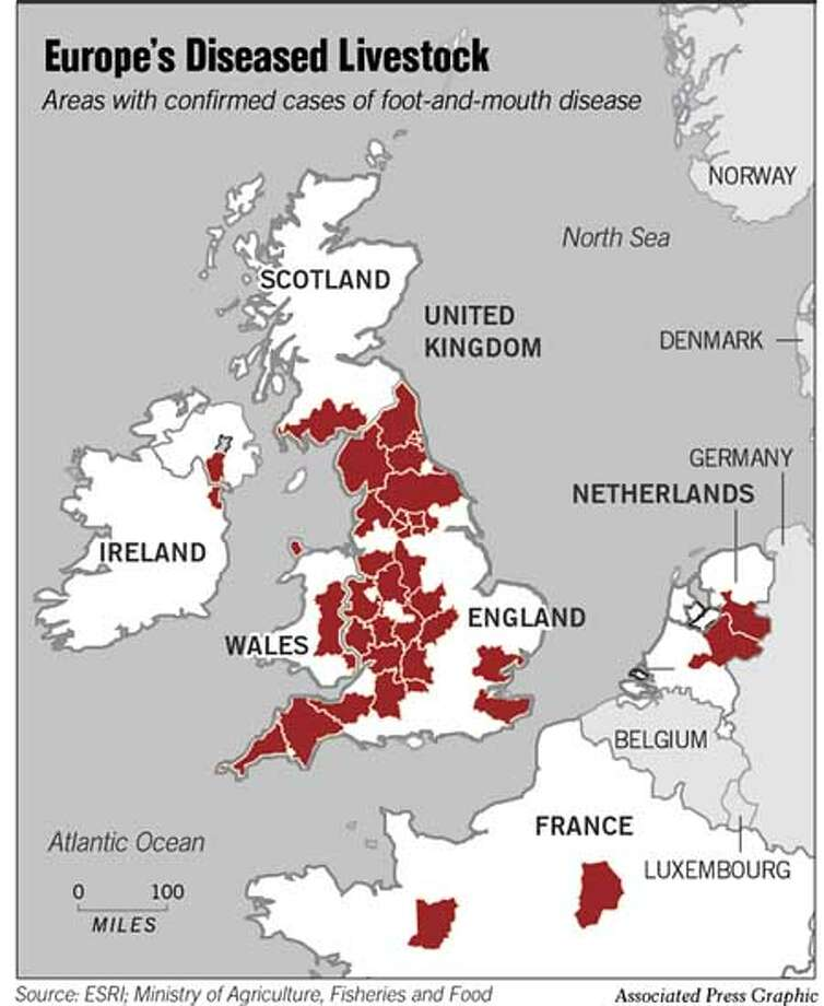 Europe's Diseased Livestock. Associated Press Graphic