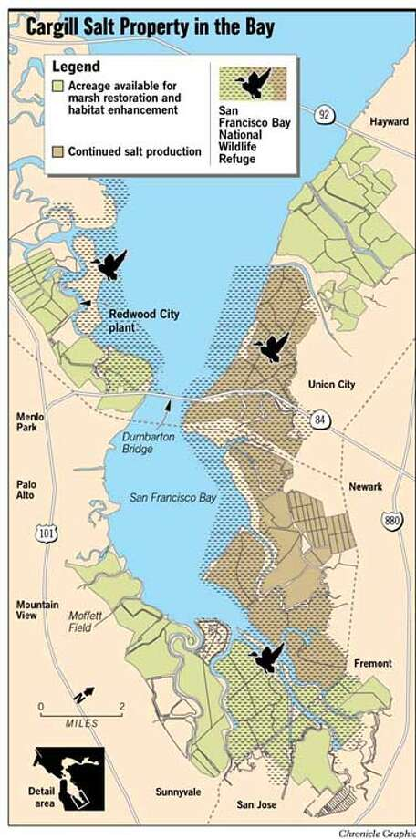 Cargill Salt Property in the Bay. Chronicle Graphic