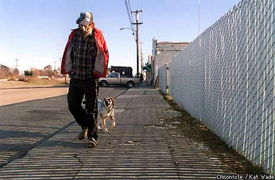 Bruce Hoffman, a tree cutter, and his Australian shepherd, Sheilah, walk down Main Street on their way to the Byron Saloon. Chronicle Photo by Kat Wade