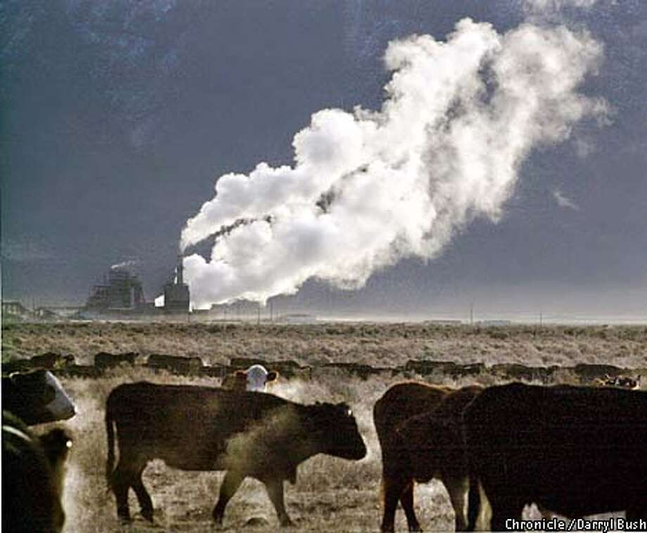 A steam plume drifts away from a power plant in Honey Lake Valley, Lassen County. Chronicle photo by Darryl Bush