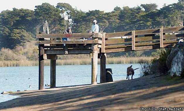 lake merced 39 s troubled waters action taken to stop