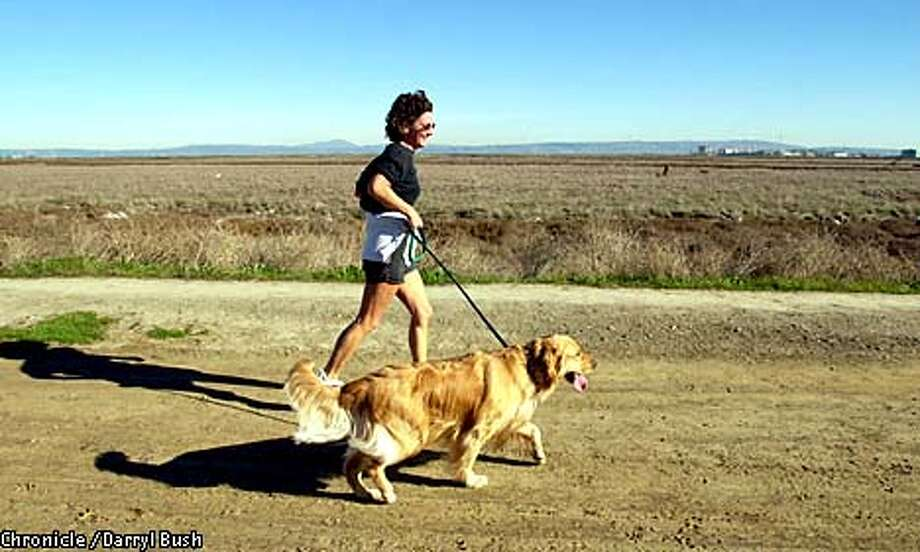 """Sharon Rene of Redwood City took her Golden Retriever, """"Sun""""  for a run in the Don Edwards San Francisco Bay National Wildlife Refuge in Redwood City. Chronicle photo by Darryl Bush"""
