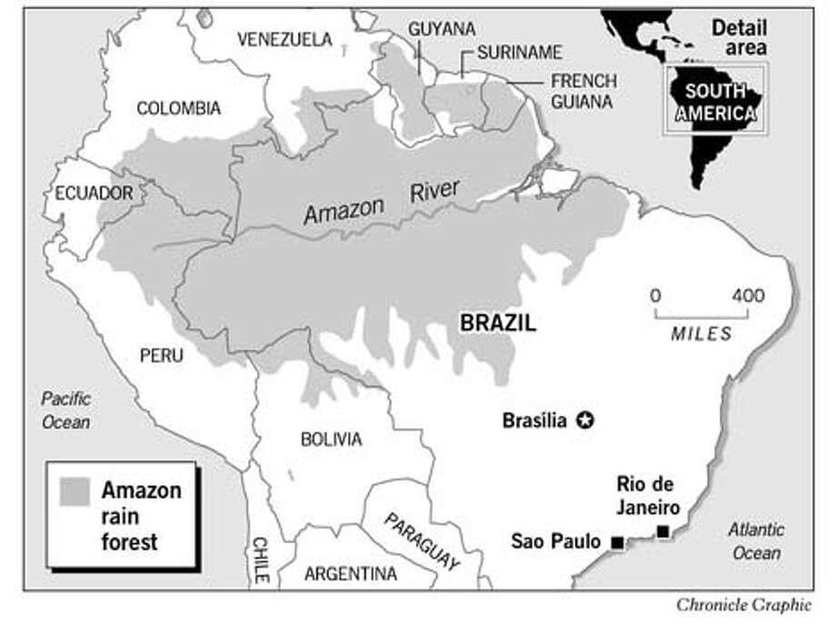 Amazon Rain Forest. Chronicle Graphic