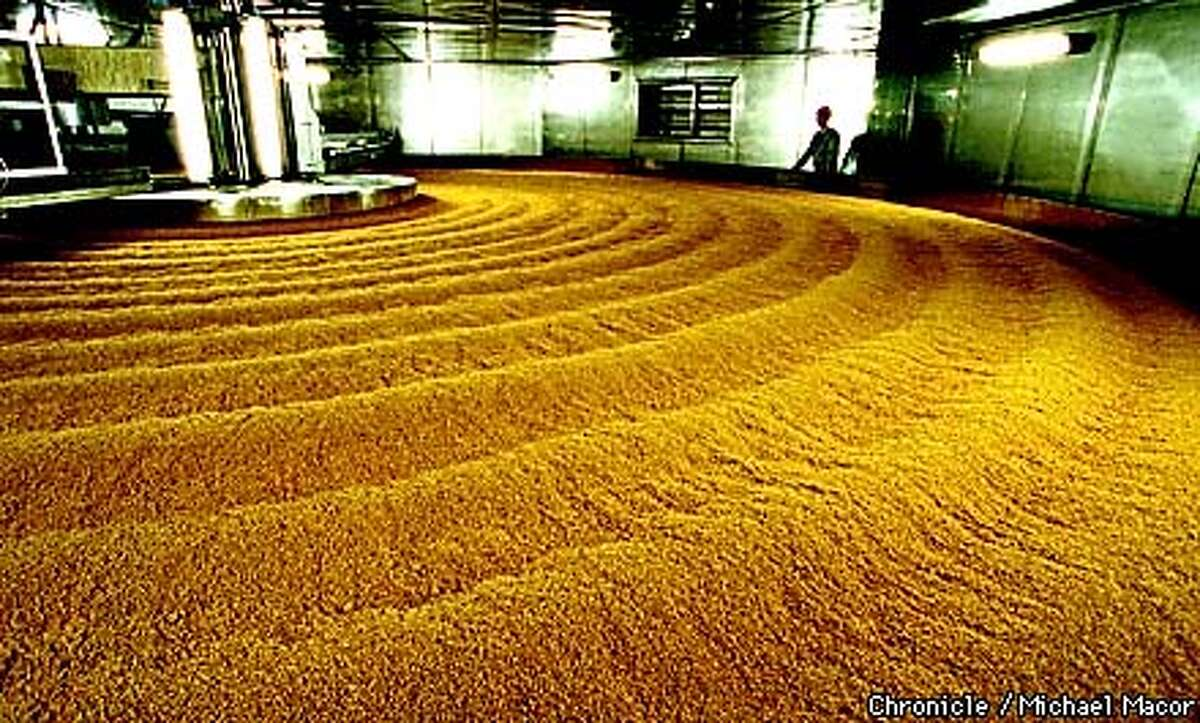 """""""KIKKOMAN"""" production plant, Folsom Ca. Soy Sauce production, KOJI stage where, wheat and soy are mixed together and kept in a warm humind room. by Michael Macor/The Chronicle"""