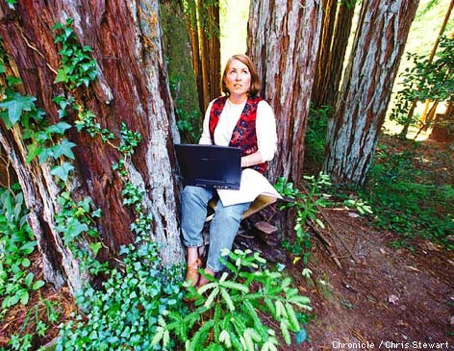 Cathy Frey lives in Gualala, a remote coastal town on the Sonoma-Mendocino county border and is two hours from the nearest college. She is earning a masters degree at Golden Gate University's CyberCampus via the Internet which allows her to work in the shady grove of redwood trees that surround her home. SAN FRANCISCO CHRONICLE PHOTO BY CHRIS STEWART Photo: CHRIS STEWART