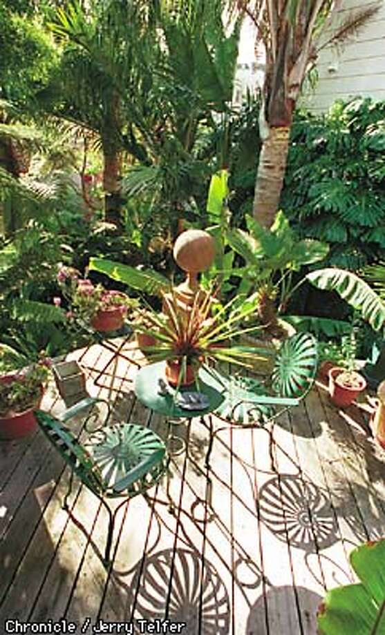 Tropical Paradise / Even in San Francisco, you can create a lush and ...