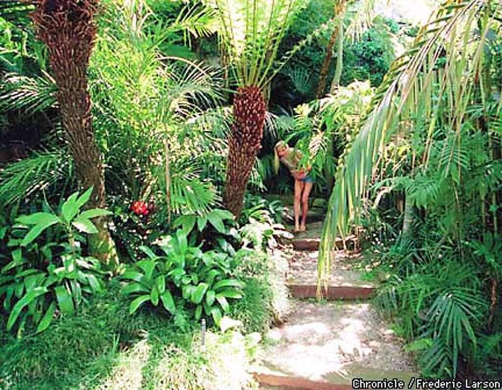 How to create a tropical garden - Tropical 15 C 18may98 Hm Frl Anna Bech Walks Through