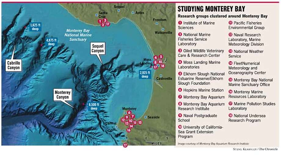 Studying Monterey Bay. Chronicle illustration by Steve Kearsley