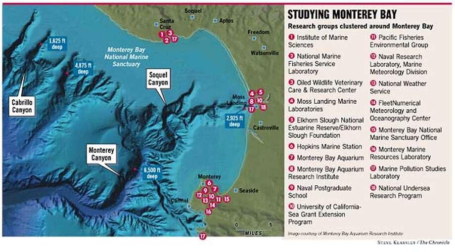 Studying Monterey Bay. Chronicle illustration by Steve Kearsley