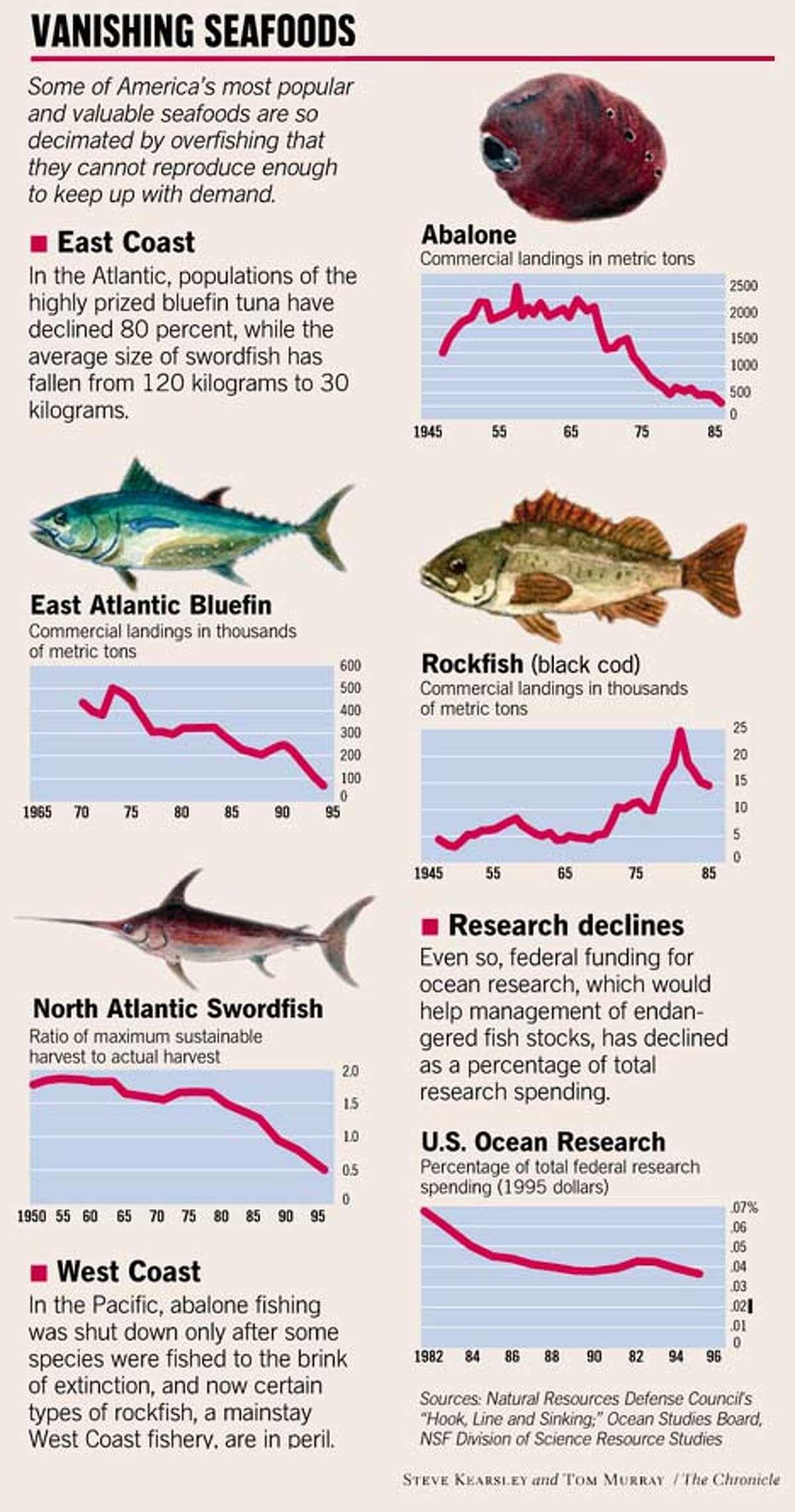 Vanishing Seafoods. Chronicle illustration by Steve Kearsley and Tom Murray