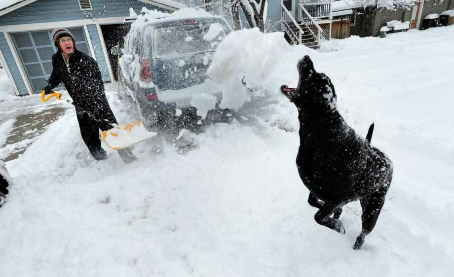 Art Allen throws snow for his dog Willie as the homeowner clears his Boulder, Colo., driveway after a winter snowstorm hit Friday. A powerful winter storm swept across Colorado on Friday as it headed east, bringing blizzard warnings to eastern Colorado and western Kansas, and winter storm warnings for southeast Wyoming and western Nebraska. New Mexico also braced for poor conditions. Photo: PAUL AIKEN / (C) 2011 Boulder Daily Camera, MediaNews Group, Prairie Mountain Publishing http://www.dailycamera.com/ http://www.buffzone.com/