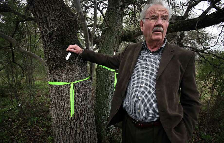 Phil Hardberger inspects trees that have  been tagged for removal on land that abuts the park that bears his name. He served as Mayor of San Antonio from June 2005 to May 2009. Photo: Bob Owen, San Antonio Express-News / © 2012 San Antonio Express-News