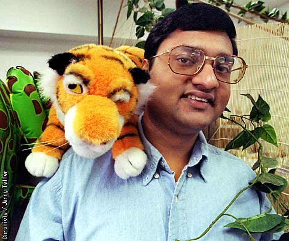"JUNGLEE/C/05MAY98/BU/JLT Anand Rajaraman, founder of Junglee Corporation with his stuffed mascot, Shere Khan. The Sunnyvale firm created a WWW ""virtual database"" product that enables web searches of multiple databases without visiting each one individually, speeding results. Junglee's offices have been decorated in a jungle motif, and many of the employees have nicknames based on R. Kipling's ""The Jungle Book."" 1250 Oakmead Parkway PHOTO BY JERRY TELFER Photo: JERRY TELFER"