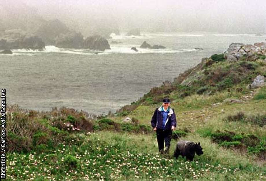 Harry Stafford of Pacific Grove is one of the few visitors to the closed off area outside of Big Sur. Although access is limited up to Rocky Point, Big Sur is still closed off from surrounding communities, and Cal Trans plans to reopen Highway 1 Thursday, April 30, 1998. (CHRONICLE PHOTO BY CARLOS AVILA GONZALEZ) Photo: CARLOS AVILA GONZALEZ
