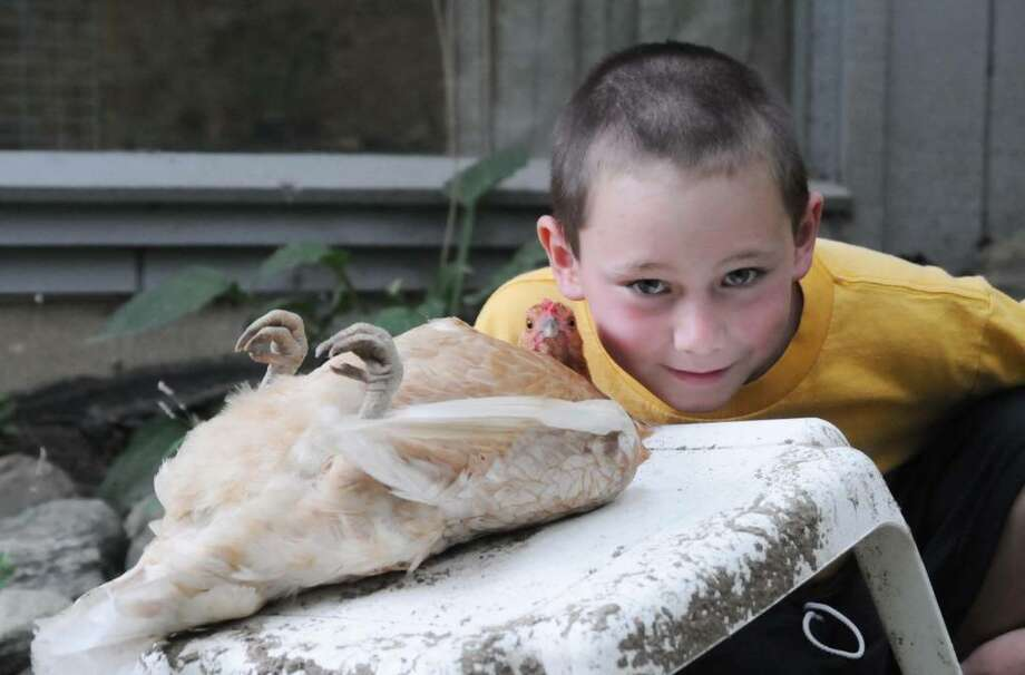 "Eight Year old Joshua McCarthy from Sherman is nicknamed ""The Chicken Whisperer"" for good reason. McCarthy has trained his chickens to lay still on their back in a trance of sorts. Pictured here are McCarthy and his chicken, Sunny, on Thursday, Aug. 20, 2009. Photo: Lisa Weir / The News-Times"