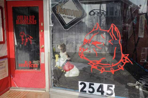 A view of the store front window at the business Off Da Rip Bloodlines on Broadway on Tuesday morning, Jan. 31, 2012 in Schenectady, NY.  The  business advertises equipment that strengthens pit bulls.  (Paul Buckowski / Times Union) Photo: Paul Buckowski