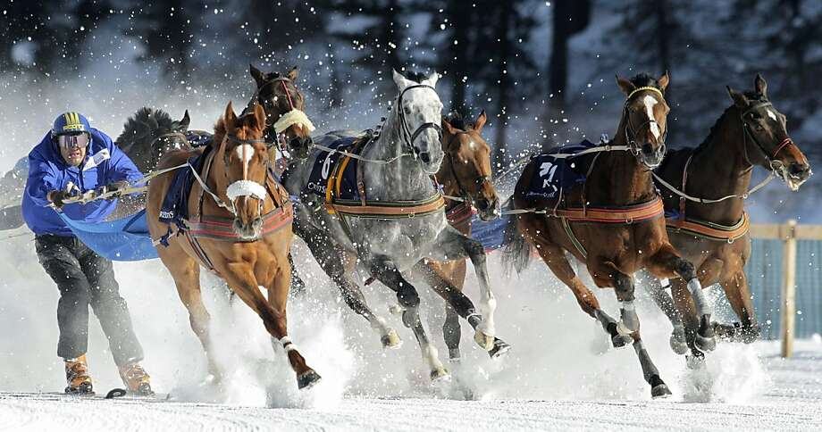 If they ran the Ben-Hur chariot race on skis, it would look something like skijoring. Fadri Casty (left) came in first in the Grand Prix Credit Suisse contest on the frozen Lake of St. Moritz, Switzerland. Photo: Arno Balzarini, Associated Press