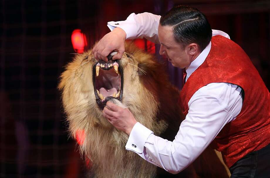 """I can't fit my head in if you don't open wider:Circus tamer Goncharov pries a lion's jaws apart during the first """"New Generation"""" International Circus Festival in Monaco. Photo: Valery Hache, AFP/Getty Images"""