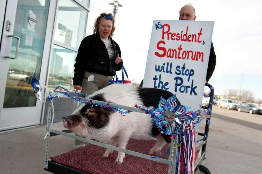 Supporters of GOP presidential candidate Rick Santorum, Marjorie Hosten, her dad, Ted, and pig, Taylor Swine, attend Santorum's campaign event in Blaine, Minnesota, on Tuesday, February 7, 2012, amid Minnesota's Republican caucuses. Photo: GLEN STUBBE, McClatchy-Tribune News Service / Minneapolis Star Tribune