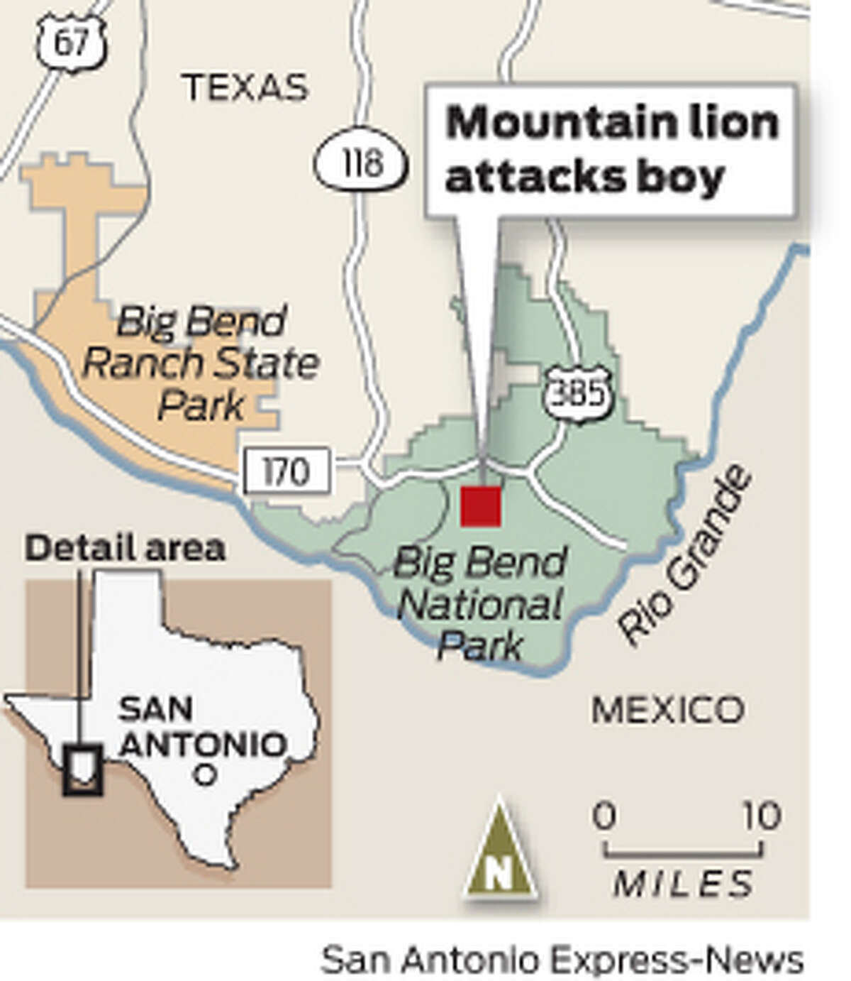 Mountain lion attacks boy in Big Bend National Park