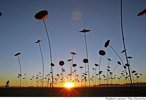An art sculpture appearing like a forest of small trees popping out of the playa during sunrise at Burning Man 2008, at Black Rock NV, on August 29, 2008. Photo: Frederic Larson, The Chronicle
