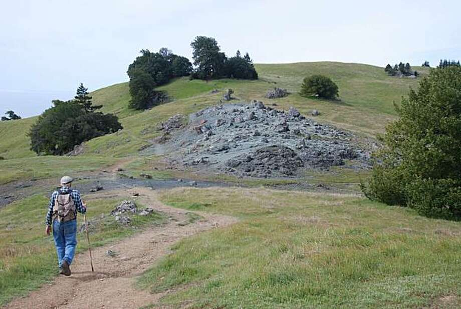 Hikers on a trail on Mt. Tamalpais. Photo: Jill K. Robinson, Special To The Chronicle