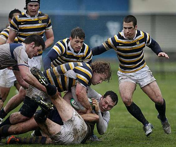 The Cal Bears rugby team prevents a British Columbia Thunderbird opponent from advancing the ball during a game on Treasure Island in San Francisco, Calif., on Saturday, Feb. 19, 2011. Photo: Paul Chinn, The Chronicle