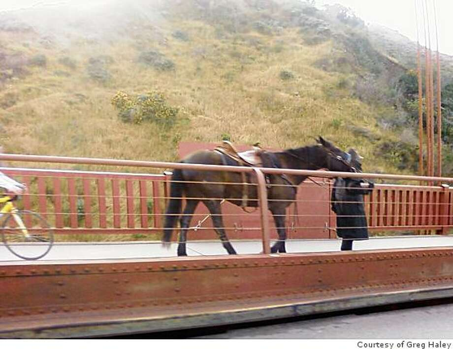 A rider walks his horse off of the Golden Gate Bridge after being told Sunday night by Highway Patrol officers that the animal was distracting drivers and could pose a hazard to pedestrians and bicyclists using the bridge walkways. Photo: Courtesy Of Greg Haley