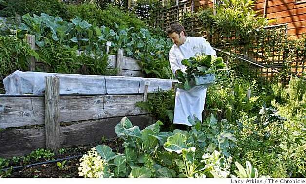 From garden to plate restaurants with gardens sfgate for Vegetable garden maintenance
