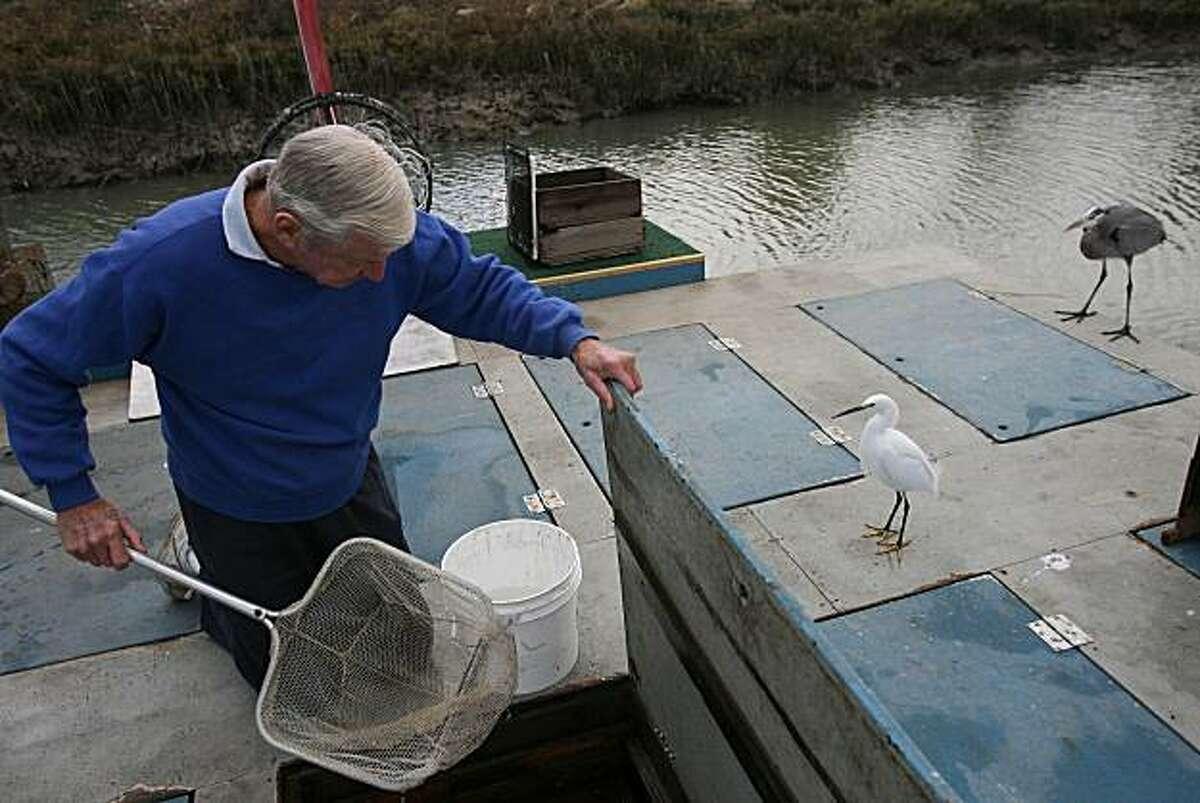Keith Fraiser works at his bait shop in San Rafael, Calif. on Thursday, December 18, 2008.