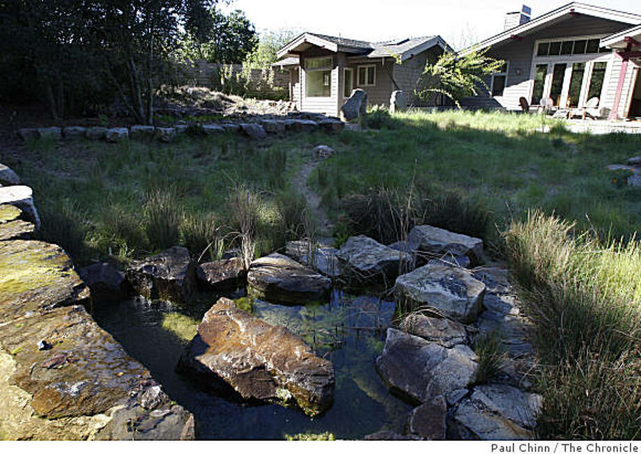 A pond in Laura Baker's home is filled with captured rainwater in Berkeley, Calif., on Thursday, March 26, 2009. Photo: Paul Chinn, The Chronicle