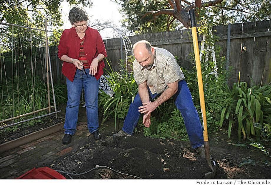 Scott Terry (right) and Gayle Hudson of San Leandro share garden tips with each other in Terry Garden which will be on the Bay Friendly Garden tour this year. His beautiful garden includes bees, raised beds and flowers. He has promoted a garden exchange with neighbors such as Gayle Hudson who helps Scott work in his garden on  on April 3, 2009. Photo: Frederic Larson, The Chronicle