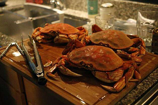 Sophie Brickman teaches her boyfriend Dave Eisenberg how to cook crabs for a thanksgiving dish in San Francisco, Calif., on Nov. 06, 2010. Photo: Michelle Gachet, The Chronicle