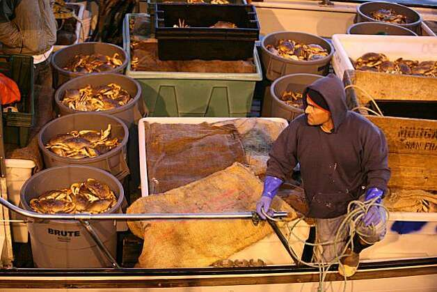 "Captain John Atkinson brings in the first 9,000 pounds of crab to Albers Seafood at pier 45 aboard his sports fishing boat ""New Rayann"" for the opening of the Dungeness crab season in San Francisco, Calif.., on Friday, December 17, 2010. Photo: Kat Wade, Special To The Chronicle"