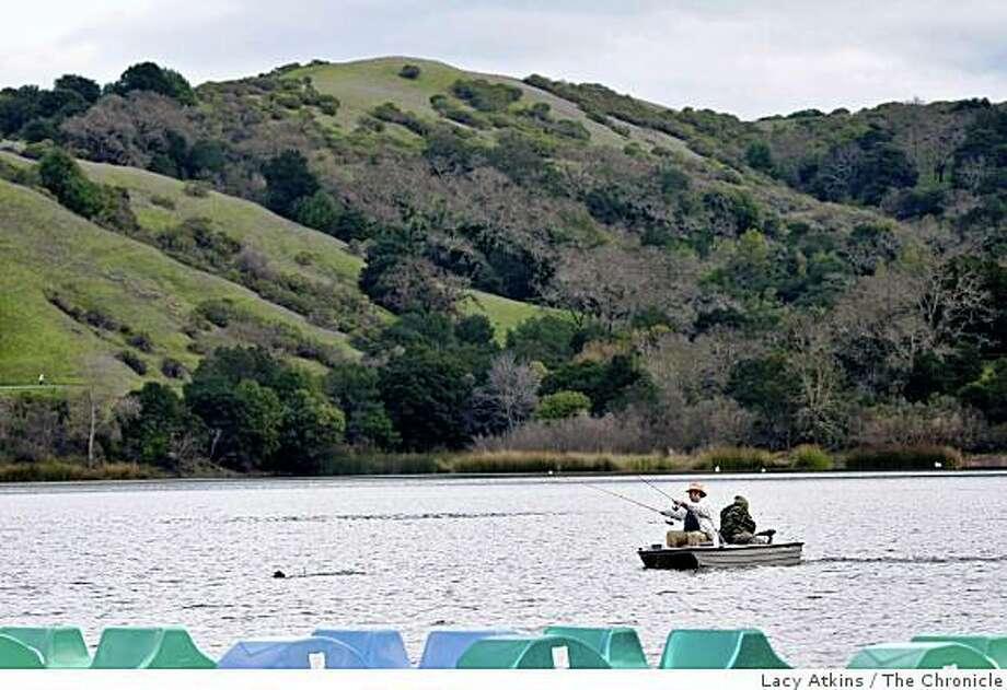 Lafayette reservoir hike bike or just picnic sfgate for Lafayette reservoir fishing report