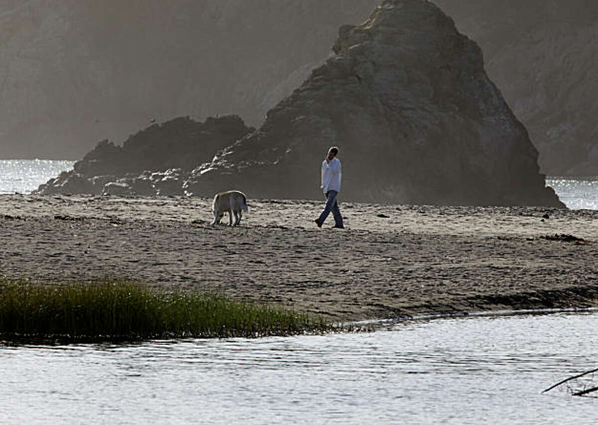 A man walks his dog on Muir Beach. In the foreground is Redwood Creek which flows into the ocean here Wednesday November 10, 2010. An ambitious plan to restore Redwood Creek at Muir Beach in Marin County, Calif. could recreate the conditions that once made the waterway through Muir Woods a big run for coho salmon and steelhead trout.