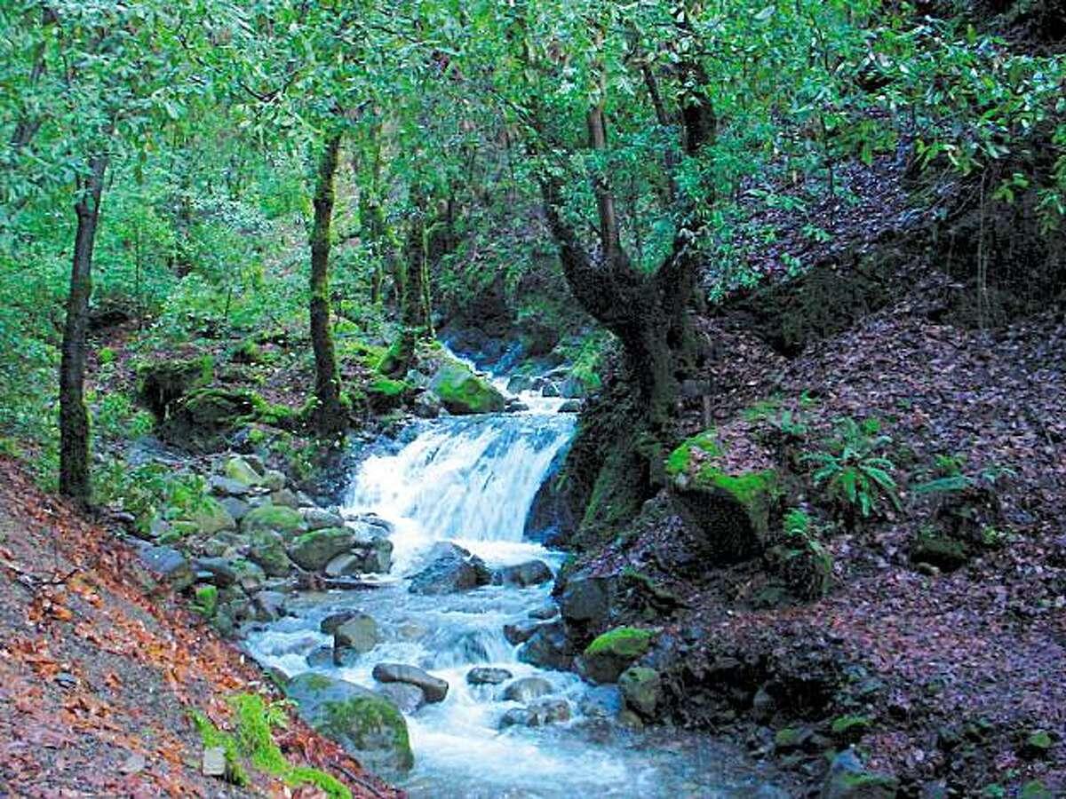 Uvas Canyon County Park CR: Santa Clara County Parks and Recreation Dept.