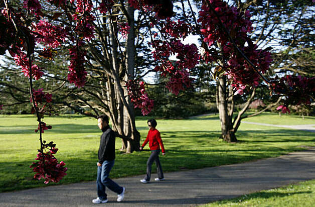 A man and woman take a morning stroll through the San Francisco Botanical Garden at Golden Gate Park in San Francisco, Calif., on Tuesday, March 24, 2009. Photo: Paul Chinn, The Chronicle