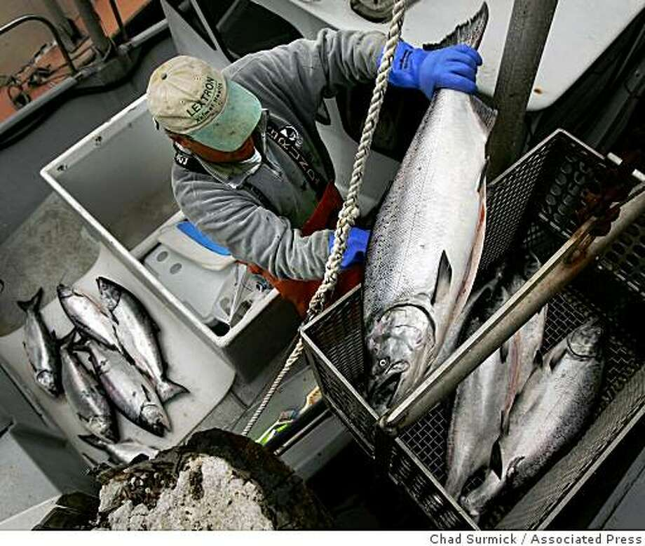 **FILE** In this Aug. 8, 2005 file photo, salmon fisherman Dan Kleinman unloads his catch at Tides Wharf in Bodega Bay, Calif. State officials has more bad news about the salmon population Tuesday. Photo: Chad Surmick, Associated Press