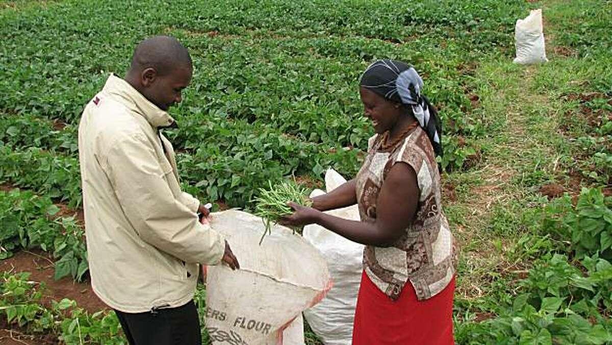 Lydia Ndung'u a Kenyan farmer shows green beans to loan officer John Muigai, who helped her obtain farm equipment through a micro-asset loan program. ?