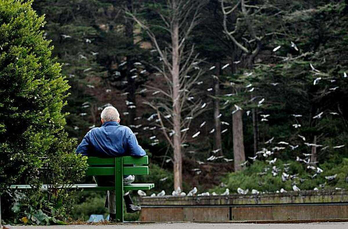 An unidentified man enjoys the weather as the birds fly above Stow Lake in Golden Gate Park, Monday Oct. 27, 2008, in San Francisco, Calif.